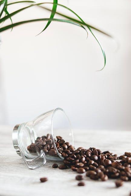 BIZCOCHOS DE CAFÉ